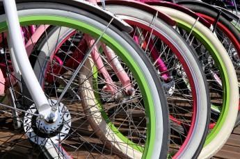 Karpacz Atrakcja Wypożyczalnia rowerów Sandra SPA